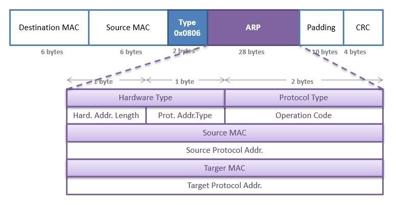 arp-packet-format-ipcisco