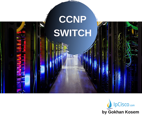 cisco-ccnp-course-ipcisco.com-2