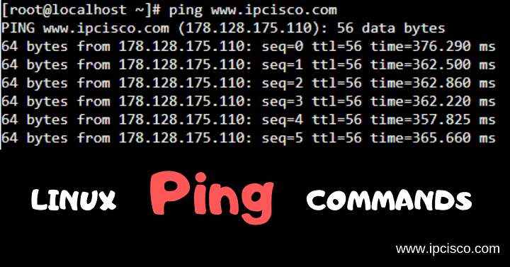 linux-ping-commands-ipcisco.com
