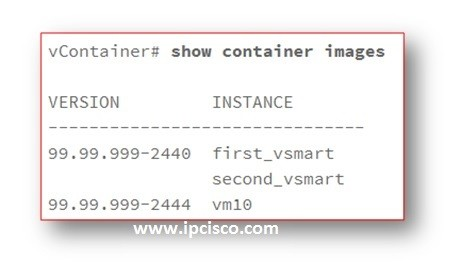 show-container-images-cisco-sd-wan