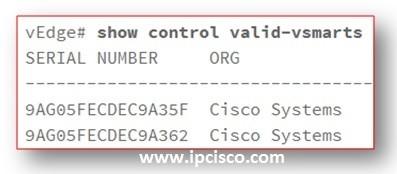 show-control-valid-vsmarts-cisco-sd-wan