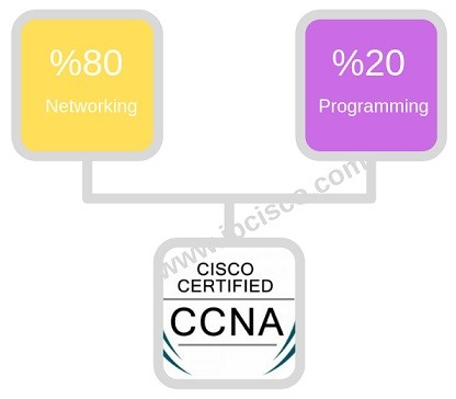 new-ccna-lessons