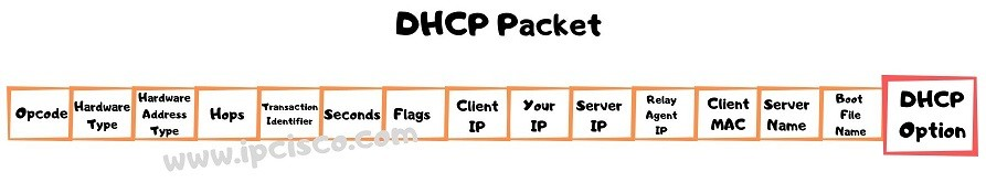 dhcp-packet-dhcp-option