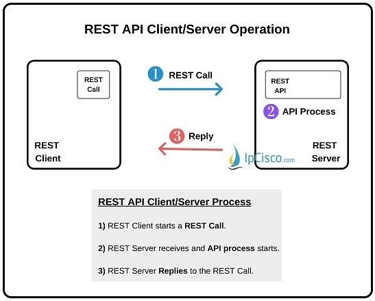 REST-API-client-server-operation
