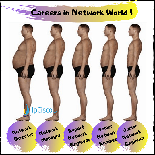 careers-in-network-world-ipcisco.com-k