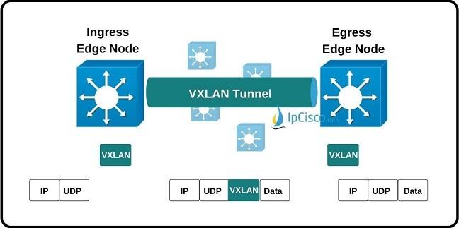 vxlan-tunnel-transmission