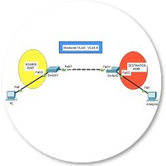 remote-span-config-r