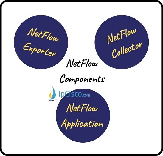 netflow-components-ipcisco
