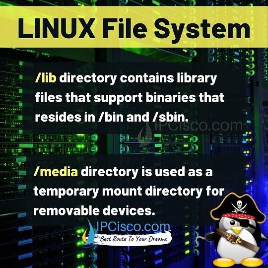 linux-file-system-lib-media-ipcisco.com