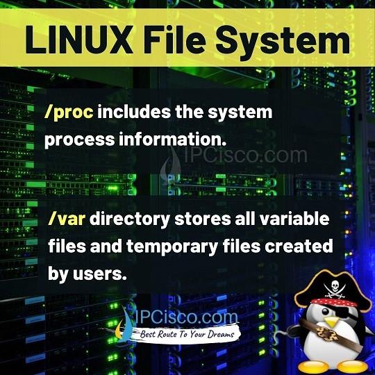 linux-files-proc-var-ipcisco.com