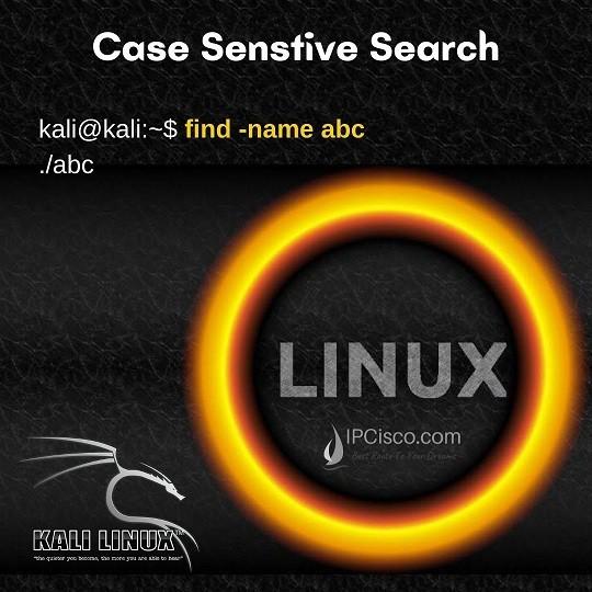 case-sensitive-seach-in-kali-linux