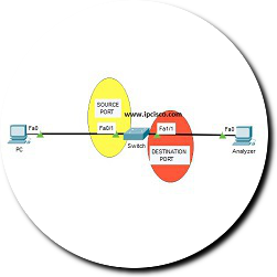 local-span-packet-tracer-ipcisco