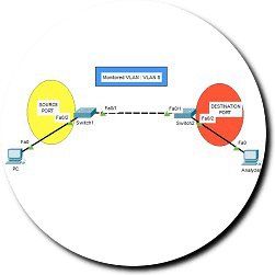 remote-span-packet-tracer-ipcisco