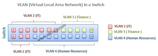 vlan port assignment