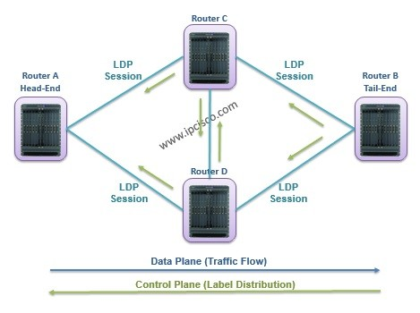label-distribution-and-traffic-flow