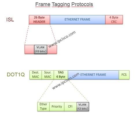 vlan frame tagging protocols