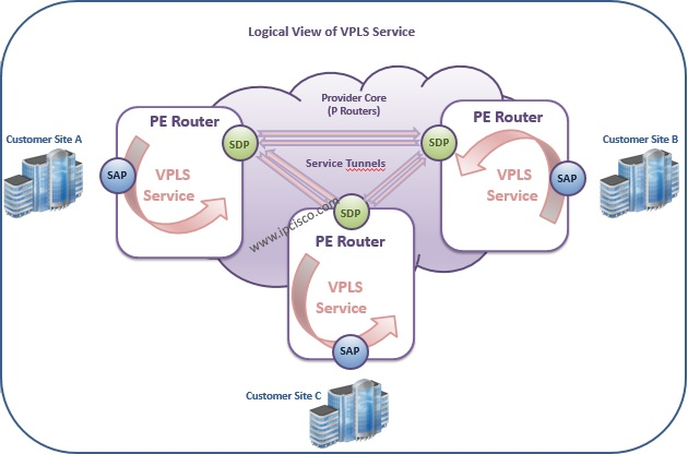 Alcatel-Lucent, Logical View of VPLS