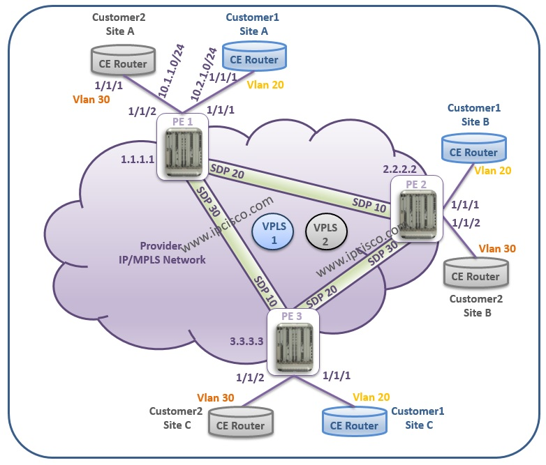 Alcatel-Lucent, VPLS Example Topology
