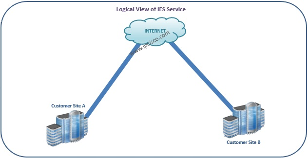Alcatel-Lucent, Customer View of IES