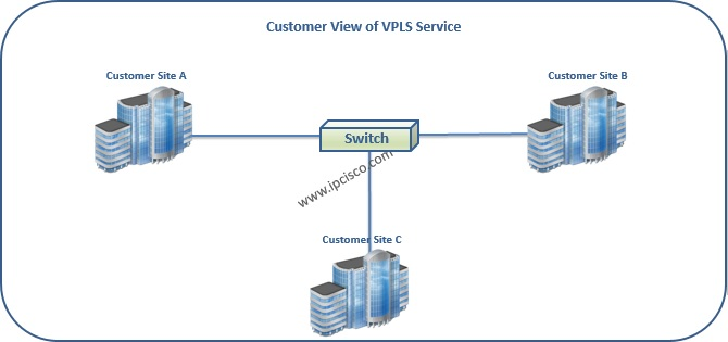 Alcatel-Lucent, Customer View of VPLS