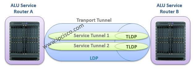 transport tunnel and service tunnel, ldp and tldp