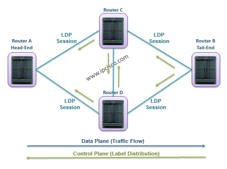 Label Distribution And Traffic Flow