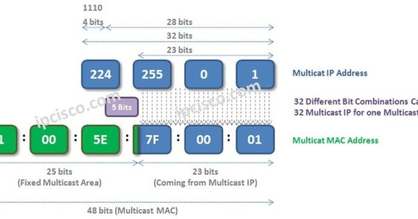 Multicast MAC Addresses | 2 Parts of Multicast MAC ⋆ IpCisco
