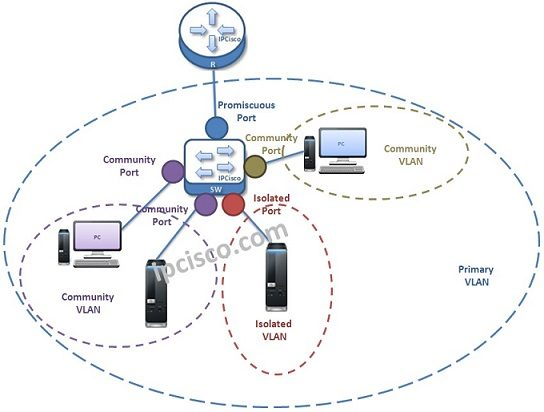 Private-vlan-ports