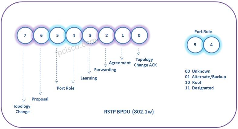 RSTP-bpdu