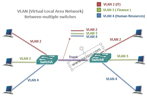 vlan(virtual local area network)