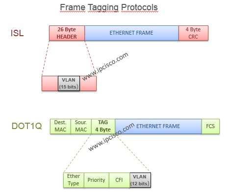 vlan frame tagging protocols, ISL and Dot1q