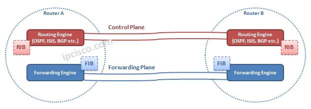 control-plane-forwarding-plane