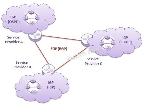 igp-versus-egp