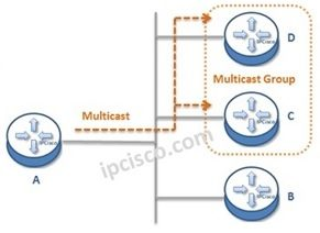 ip-multicast-course