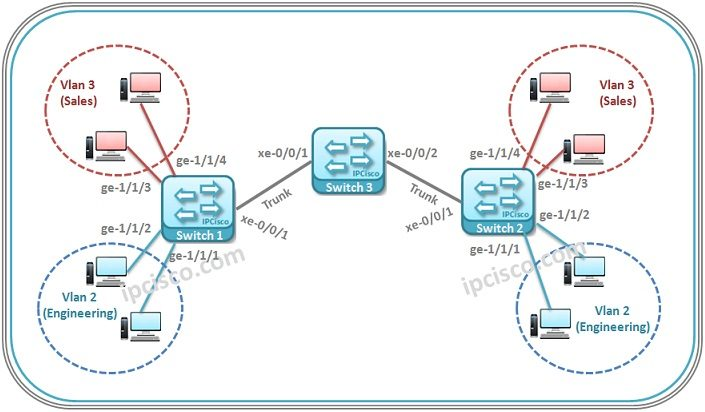 juniper-mvrp-configuration