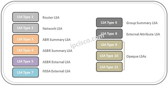 lsa-types-of-ospf-k