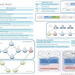 mpls-cheat-sheet