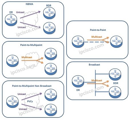 ospf-network-types-k