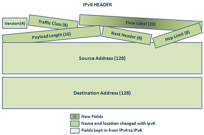 Headers of IPv4 and IPv6