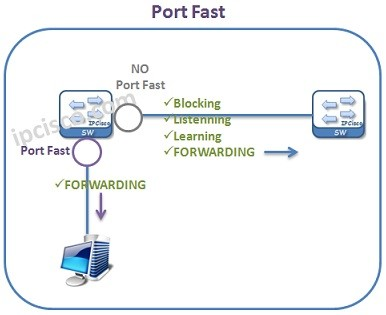 port-fast-example