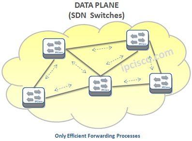 sdn-data-plane