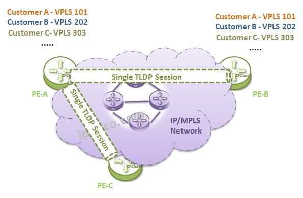 vpls, single-tldp-session