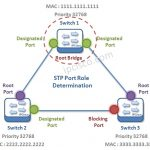 stp-port-selection