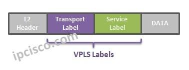 vpls-labels-ipcisco