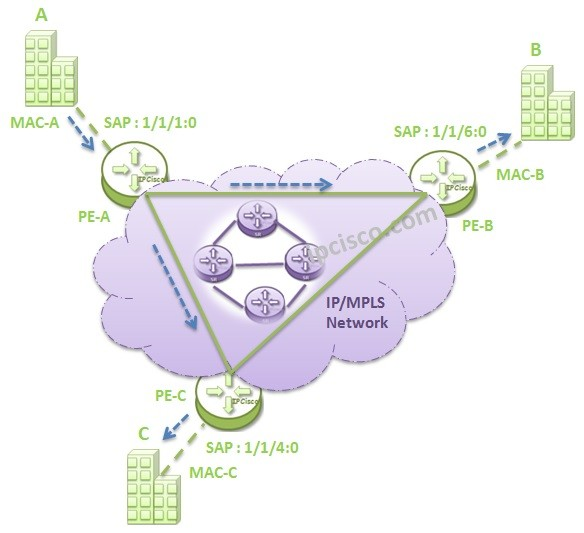 vpls-mac-learning-2